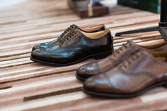 Mens shoes. On the carpet Stock Images