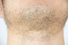 Mens short beard Royalty Free Stock Image