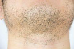 Mens short beard Royalty Free Stock Image