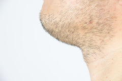 Mens short beard Royalty Free Stock Photo