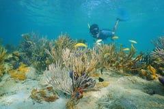 Mens snorkelen onderwater met koralen en vissen Stock Fotografie