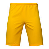 Mens sports yellow shorts. Mens sports yellow  shorts, Isolated on white background Royalty Free Stock Images