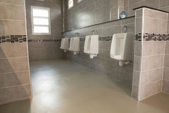 Mens toilet,interior and home background Royalty Free Stock Photo