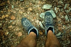 Mens trekking shoes while hiking in forest.  royalty free stock images
