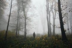 Mens in verrukt de herfsthout met geheimzinnige mist stock foto's