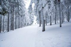Mens in witte sneeuw de winteraard De foto met geeft ruimte uit Stock Fotografie