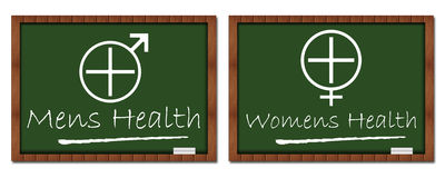 Mens Womens Health Classroom Board Royalty Free Stock Image