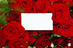 Mensagem em rosas Fotos de Stock Royalty Free