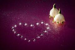 Mensagem romântica do amor Foto de Stock Royalty Free