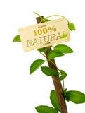 mensaje de la muestra natural del 100 por ciento en un panel de madera y un pla verde Foto de archivo