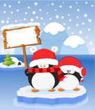 Mensaje de la Navidad Foto de archivo