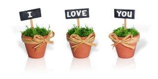 Mensaje del amor Fotos de archivo libres de regalías