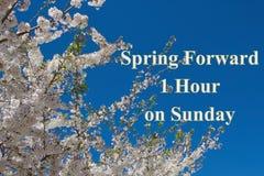 Mensaje delantero de la primavera Fotos de archivo