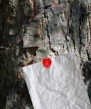 Mensaje en un árbol fotos de archivo