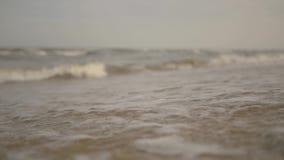 Mensaje en una botella en la playa almacen de metraje de vídeo