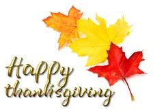 Mensaje feliz de la tarjeta de felicitación de la acción de gracias Fotos de archivo