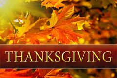 Mensaje feliz de la tarjeta de felicitación de la acción de gracias Imágenes de archivo libres de regalías