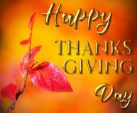 Mensaje feliz de la tarjeta de felicitación de la acción de gracias Foto de archivo libre de regalías