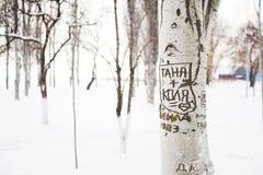 Mensaje romántico en árbol Imágenes de archivo libres de regalías