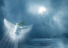 Mensajero de la paz Imagen de archivo libre de regalías