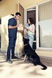Mensajero Dog del servicio del servicio a domicilio que hace compras fotos de archivo