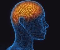Mensch Brain Power Connections Lizenzfreie Stockfotografie
