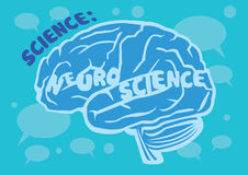 Mensch Brain Vector Illustration für Neurologie vektor abbildung