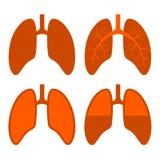 Mensch Lung Icons Set Lizenzfreies Stockbild