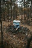 Mensch mit einer Karte im Wald Lizenzfreie Stockbilder