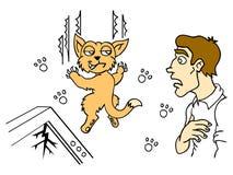 Mensch und Katze Stockbild