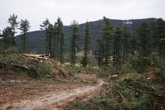 Mensch zerstört Mutter Erde Lizenzfreies Stockbild