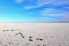 Menschen und Kasuarfuß druckt im See Eyre Lizenzfreie Stockfotos