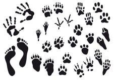 Menschen- und Tierabdrücke Lizenzfreies Stockfoto