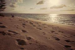 Menschenspuren auf Sand Lizenzfreie Stockfotografie