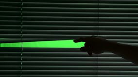 Menschlich öffnet horizontal hängenden Jalousie Grüner Bildschirm stock video footage