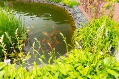Menschlich-gemachter Teich mit Fischen Lizenzfreies Stockbild