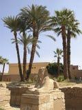 Menschlich-vorangegangene Sphinx 1 Stockbild