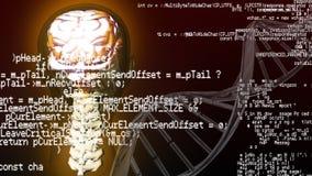 Menschliche Anatomie- und Schnittstellencodes stock video