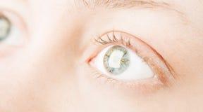 Menschliche Augen Lizenzfreie Stockbilder