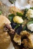 Menschliche Diät im Steinzeitalter Stockbild