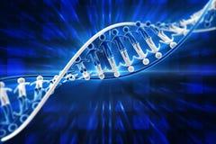 Menschliche DNA Stockfoto