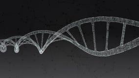 Menschliche DNA Abstrakter schwarzer Hintergrund mit dem Plexus Schleifenanimation