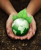 Menschliche Hände anhalten grün auf Düngemittelboden Lizenzfreies Stockbild
