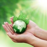 Menschliche Hände, die grüne Erde mit einem Blatt anhalten Stockbilder