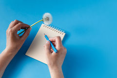 Menschliche Hände mit Bleistiftschreiben auf Papier Lizenzfreies Stockfoto