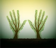 Menschliche Hände sehen wie Baum mit auf Boden aus und ausdehnend zur Sonne, helfen Sie dem Baumkonzept, speichern die Waldidee lizenzfreie abbildung