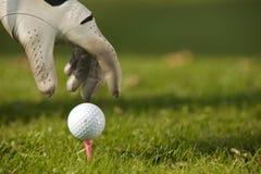 Menschliche Hand, die Golfball auf T-Stück, Nahaufnahme in Position bringt Lizenzfreie Stockfotos