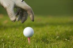 Menschliche Hand, die Golfball auf T-Stück, Nahaufnahme in Position bringt Stockfotografie
