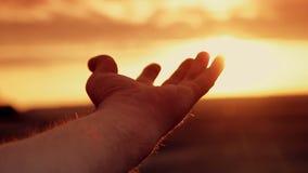 Menschliche Hand im Sonnenuntergang stock footage