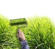 Menschliche Hand mit der Rolle, die wahres Gras auf weißer Wand malt Stockfotos